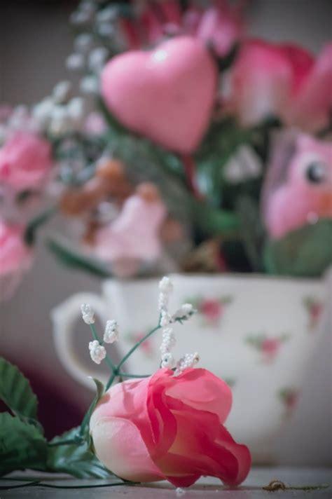 bloemen liefde valentijn bloemen hart 183 gratis foto op pixabay