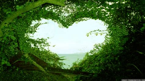 wallpaper green love beautiful love nature wallpaper hd desktop wallpapers love