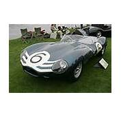 1955  1956 Jaguar D Type Works Long Nose Gallery Images