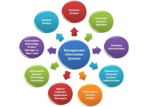 Mba In Management Information Systems Degree State by Thecb Tuning Management Information Systems
