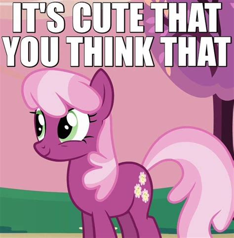 My Little Pony Know Your Meme - image 697783 my little pony friendship is magic