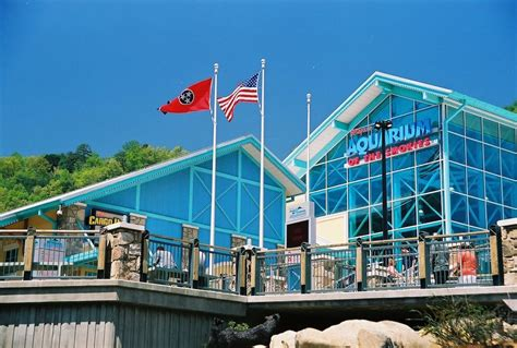 ripley s glass bottom boat new at the gatlinburg aquarium ripley s glass bottom boat