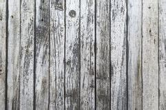 Seamless Background Texture White Wood Stock Images