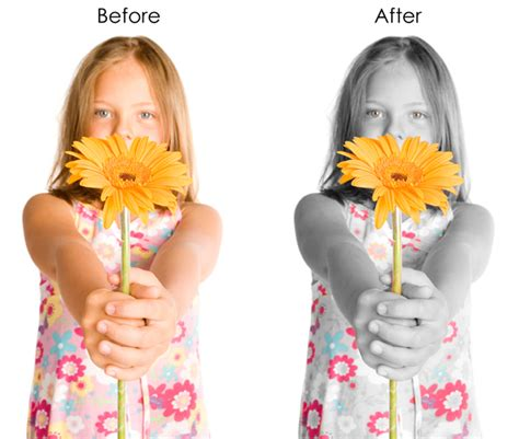 photoshop cs5 tutorial color splash effect color splash photoshop 28 images color splash