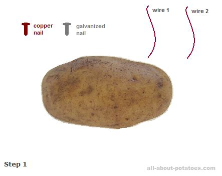 How To Find Negative Energy At Home how to use potato electricity in 4 steps