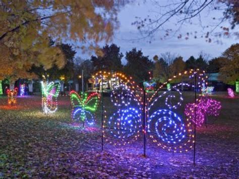 detroit zoo lights 2013 two weeks left to see lights at detroit zoo macomb