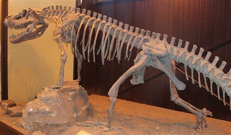 saurosuchus wikipedia
