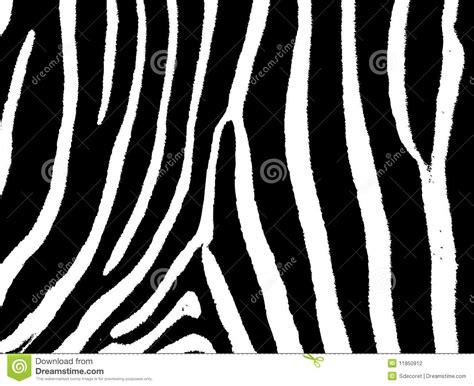 zebra pattern information seamless zebra pattern
