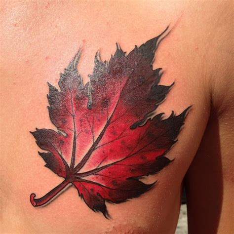 fall leaf tattoo leaf tattoos designs ideas and meaning tattoos for you