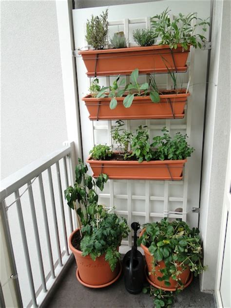 balcony vegetable gardens how i created a small vertical vegetable garden on my