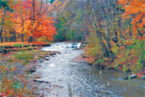 pa fish and boat commission erie pa steelheading on erie s fourmile is better now outdoornews