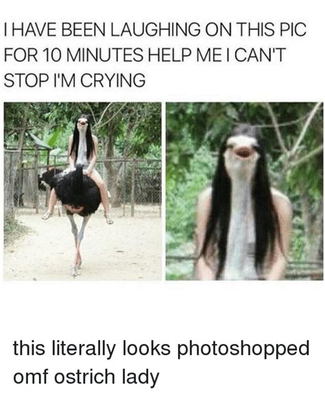 Ostrich Memes - 25 best memes about omf omf memes