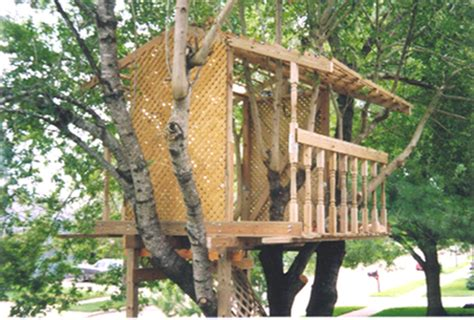 simple tree house designs and plans welcome to ez treehouse plans