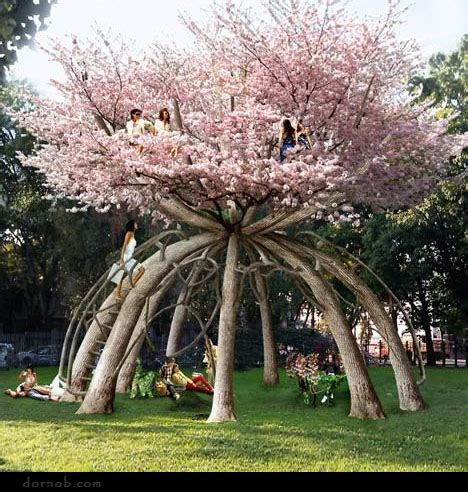 cherry tree house ren 233 e finberg tells all in of adventures in design japanese cherry blossom