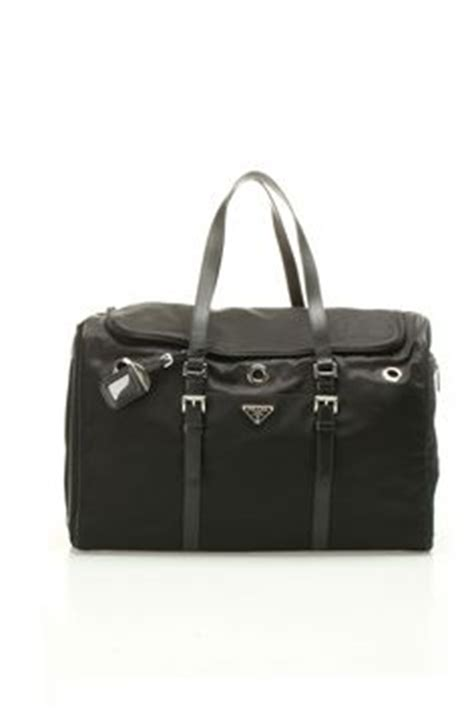 prada puppies four legged on collars carrier and standard poodles