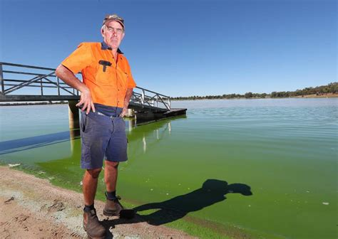 wagga boat club facebook plans to solve algae on lake albert by harvesting storm