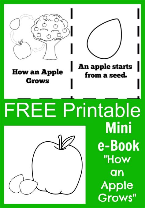 biography ebook free 10 best images about apple tree life cycle on pinterest