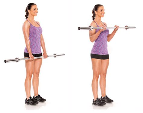 Barbel Curl redefine your bodyweight loss tips