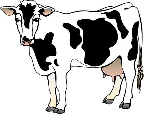 scheune zeichnung kuh scheune bauernhof 183 kostenlose vektorgrafik auf pixabay