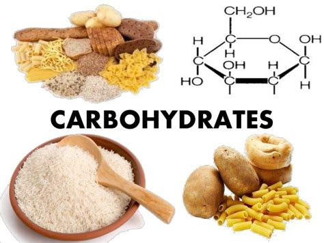 carbohydrates provide carbohydrates