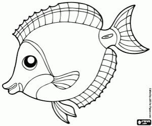 coloring pages of reef fish fish coloring pages printable games