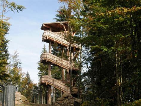 haus zur wildnis besucherzentrum haus zur wildnis bayerischer wald