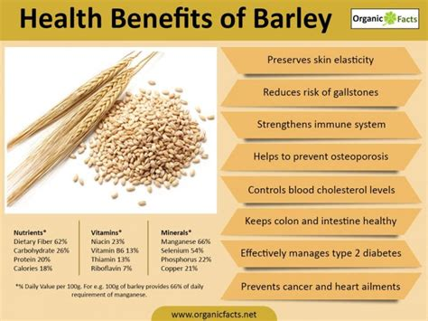 whole grains meaning in marathi best 10 benefits of barley organic facts