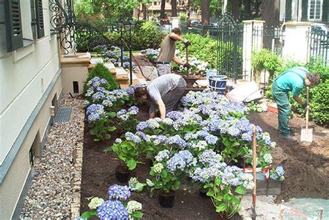 vorgarten bepflanzung arkadia gartengestaltung berlin leistungen vorgarten