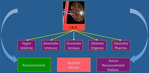 Insuffisance R 233 Nale Aig 252 E Acute Kidney Injury
