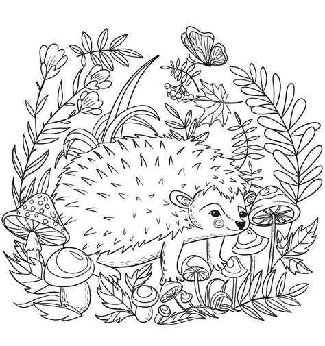 hedgehog coloring pages realistic hedgehog pages coloring pages