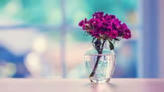 desktop wallpaper flowers