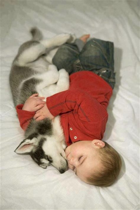 baby puppy dogs 25 adorable photos that prove why babies need pets