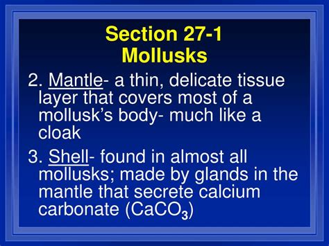 section 27 4 mollusks worksheet answers section 27 4 mollusks worksheet answers the best and