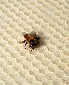 come fare le candele di cera come fare le candele di cera d api da nido d ape