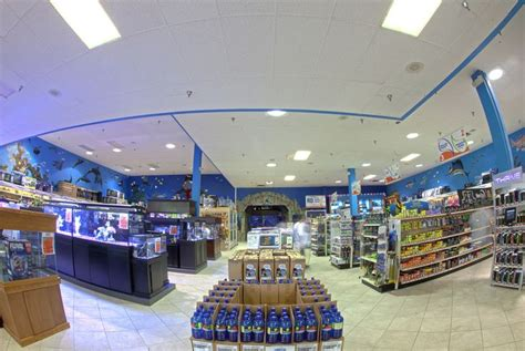 aquarium design los angeles 17 best images about come see us on pinterest retail