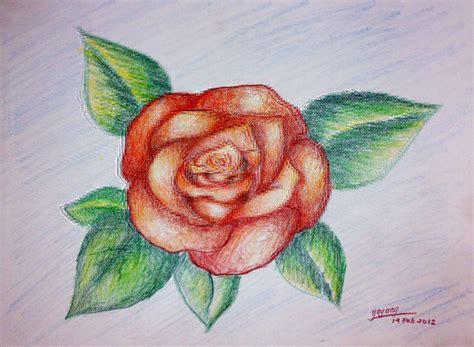 the gallery for gt sketsa bunga mawar