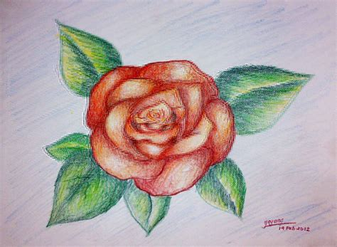 strobica studio sketsa lukisan bunga