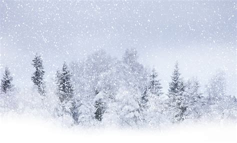 welpper snow snow storm wallpapers wallpaper cave