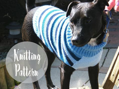 knitting pattern puppy jumper dog sweater knitting pattern handylittleme