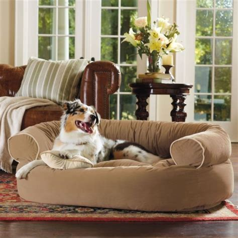 comfy pet bed frontgate comfy pet bed frontgate dogs