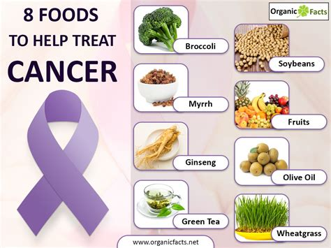my home is in the house of cancer books stop these 8 foods to prevent cancer northlines