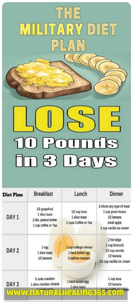 Detox Diet To Lose 10 Pounds In 2 Weeks by Best 25 3day Diet Ideas On