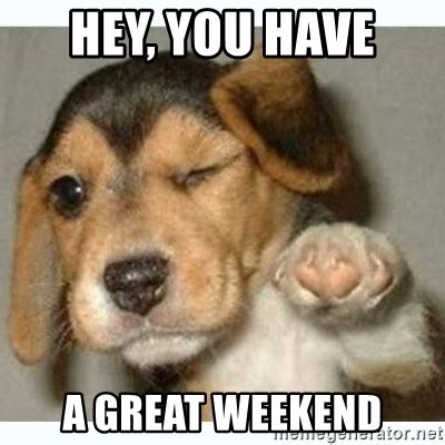 Weekend Dog Meme - happy friday have a great weekend puppy foto bugil bokep