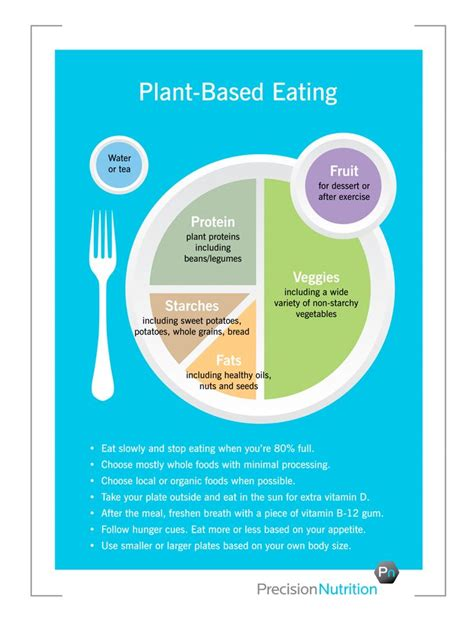 Precision Nutrition Detox by Best 25 My Plate Ideas On Healthy Plate