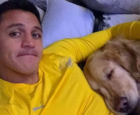 alexis sanchez dogs banner arsenal fans to unfurl alexis sanchez dogs banner against