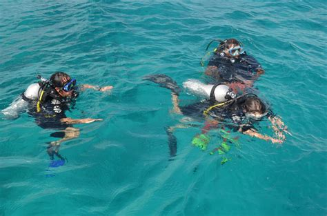 best snorkeling maldives budget maldives snorkeling budget maldives