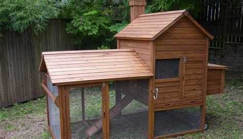 Backyard Chicken Coops Brisbane Chicken Coops Queensland