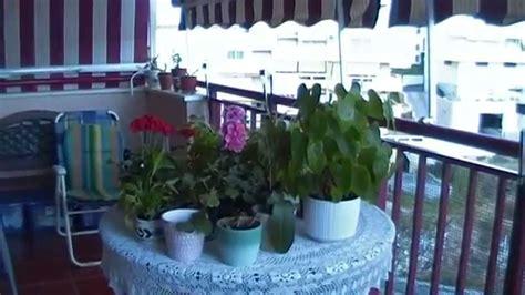 imagenes de jardines caseros fotos video mini jardin bot 193 nico casero youtube