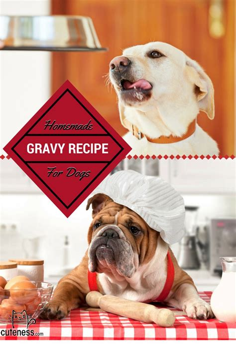 gravy for dogs 1000 images about treat recipes on moist cupcakes gravy and chef