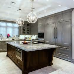 Gray Cabinets Kitchen by 24 Grey Kitchen Cabinets Designs Decorating Ideas